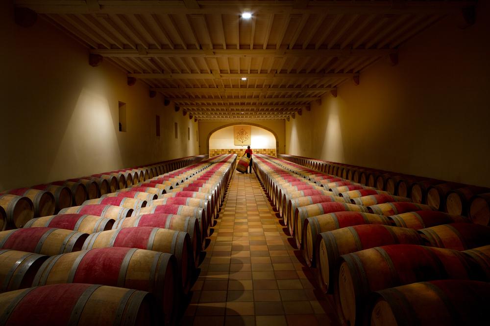 Château Phélan Ségur's cellar